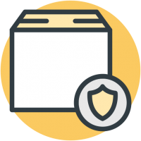 Election Security Icon