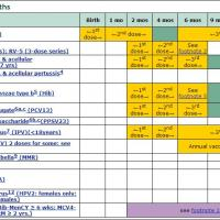 Image of immunization calendar