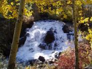 Fall Colors on Lee Vining Creek