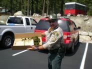 MCSO Mounted Patrol duty ....
