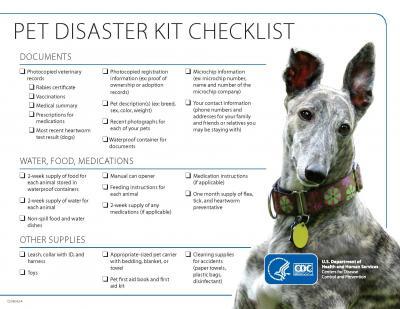 Pet Disaster Kit Checklist