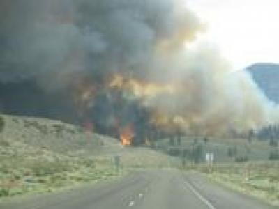 June Lake Fire 2007